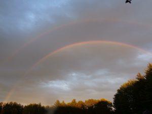 Seeing Rainbows